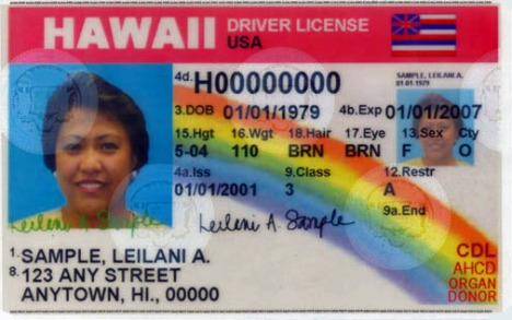 Hawaii Drivers License Sample