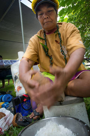 This year the festival is called 'Ulu a Niu and will feature fresh coconut water for sale and cultural and horticultural activities related to niu (coconut) such as making of coconut milk, coconut palms for sale, crafting of pahu drums from coconut with Keone Turalde, coconut weaving, and making cordage from coconut fiber with Larry Kuamo'o. (Photo by Craig Elevitch)