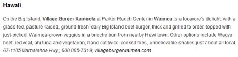 Village Burger