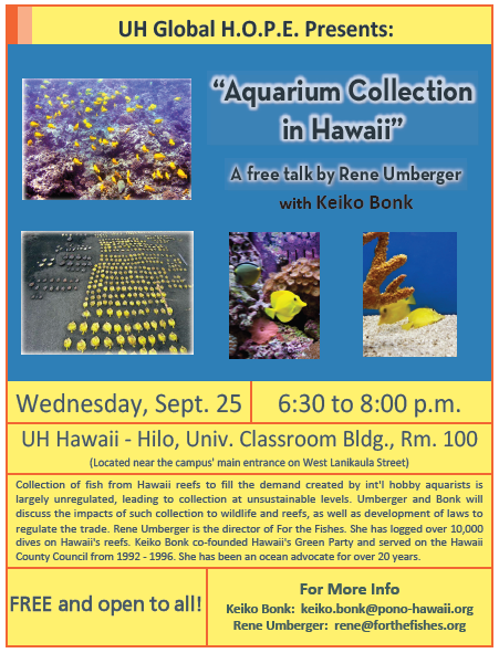 Aquarium Collecting in Hawaii