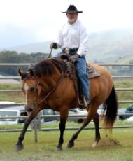 2013 Hawaii Horse Expo Presenter Lester Buckley.