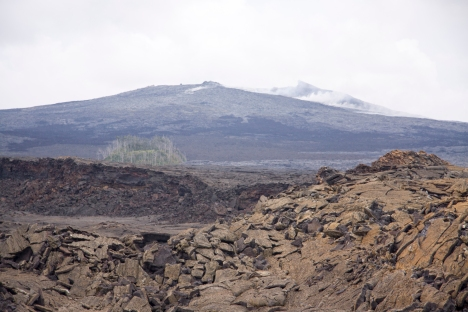The source of the Kahaualeʻa 2 flow—a spatter cone at the northeast edge of Puʻu ʻŌʻō's crater floor—forms the knuckle-like bump just above the center of the photo.