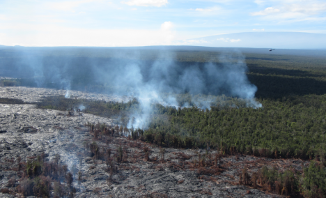 The photo shows the main area of vegetation fires, along the north margin of the flow. Mauna Loa can be seen in the distance in the upper right.  (Click to Enlarge)