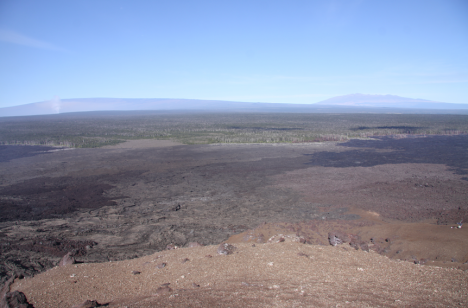 In front of the summit of Mauna Loa, the degassing plume from the lava lake at Kīlauea's summit is rising vertically.  Click to Enlarge